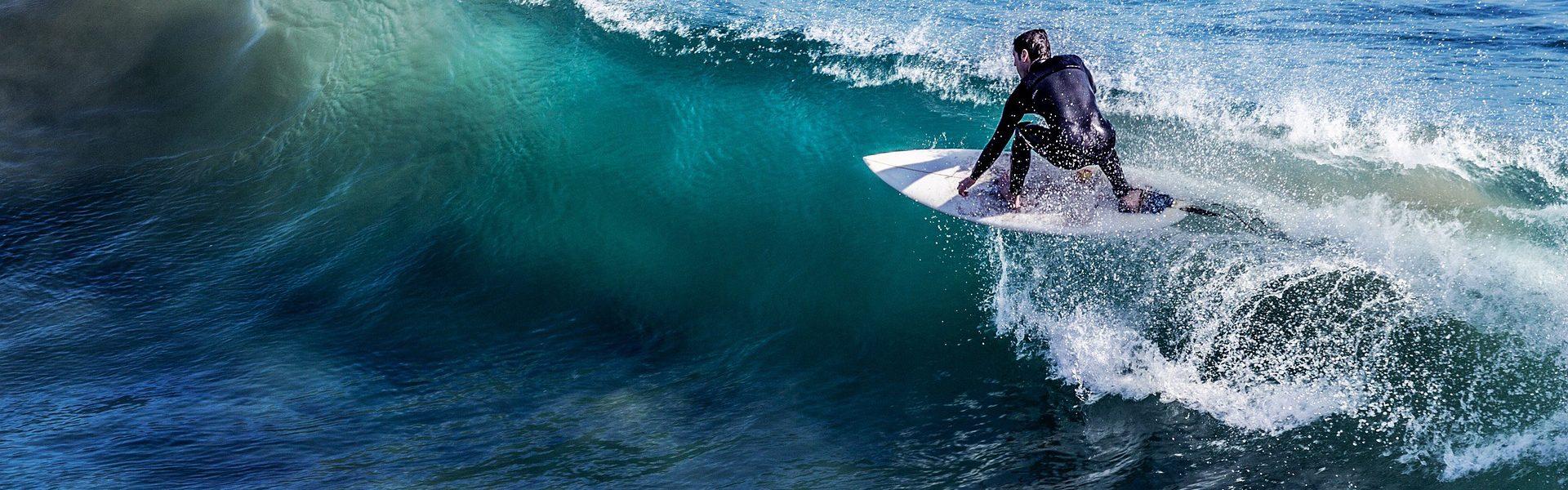 Header Bild Sicher surfen ist keine Wissenschaft