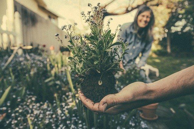 4betterdays: Aktion Gartenwerkzeuge
